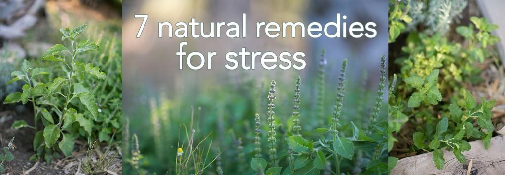 7 natural stress remedies