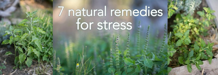 7 natural stress remedies